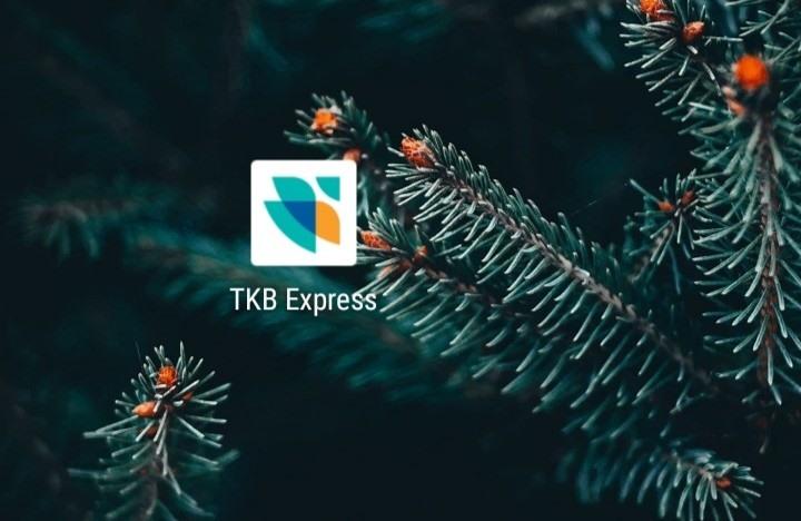 Онлайн банк ткб экспресс