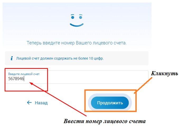 ввод л/с